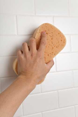 Убираем грибок в ванной комнате с плитки и цемента