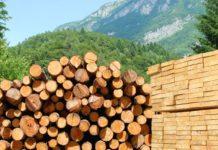 хранение древесины